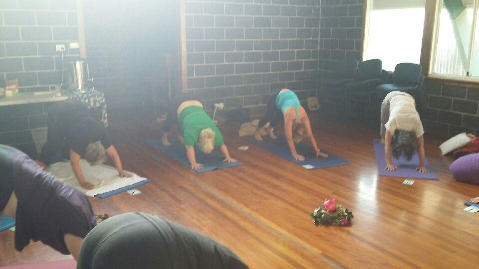 yoga camp 2 downward dog